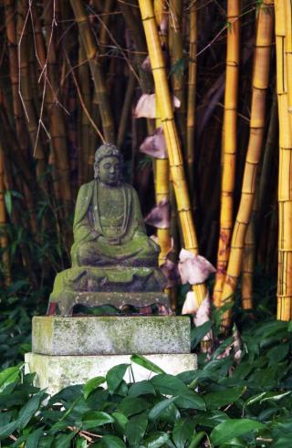 Allerton Buddha 2