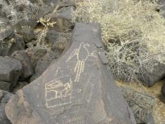 petroglyph, Albuquerque, New Mexico
