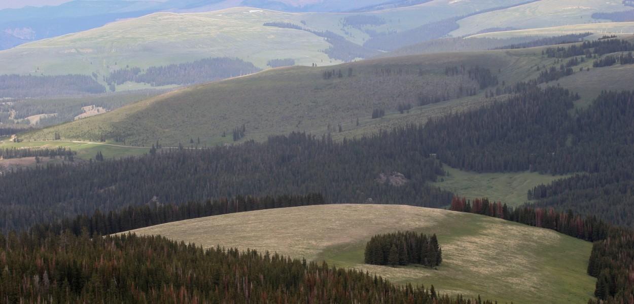 Big Horn Wyoming
