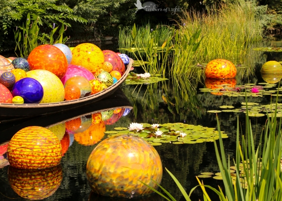 Chihuly glass sculpture, floating glass orbs, water lilies, Denver Botanical Garden