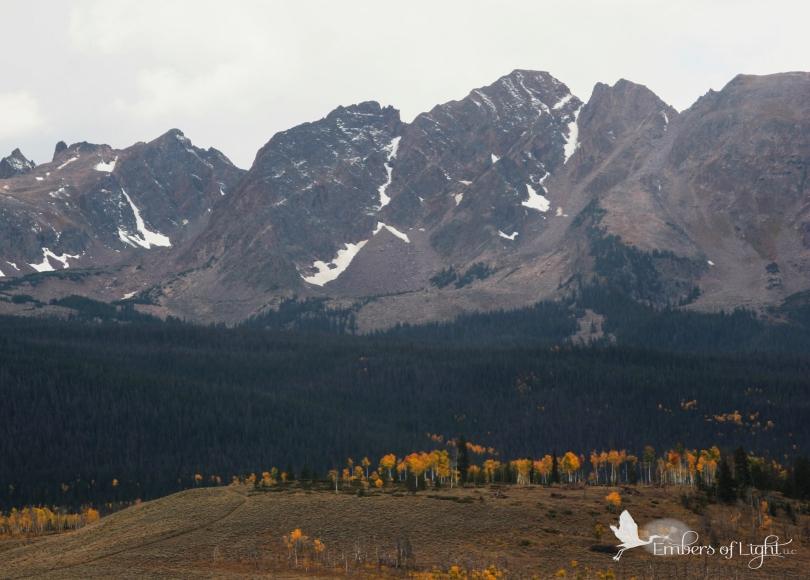Rocky Mountains, gold aspens, Colorado