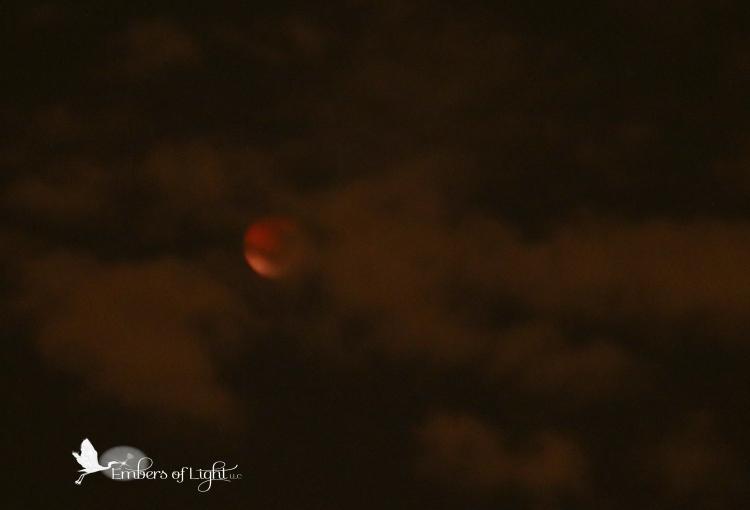lunar eclipse, blood moon
