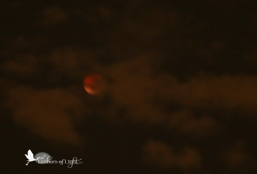 lunar eclipse, blood moon