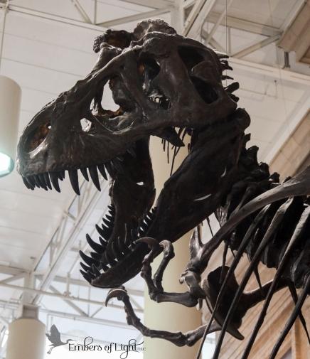 tyrannosaurus rex statute