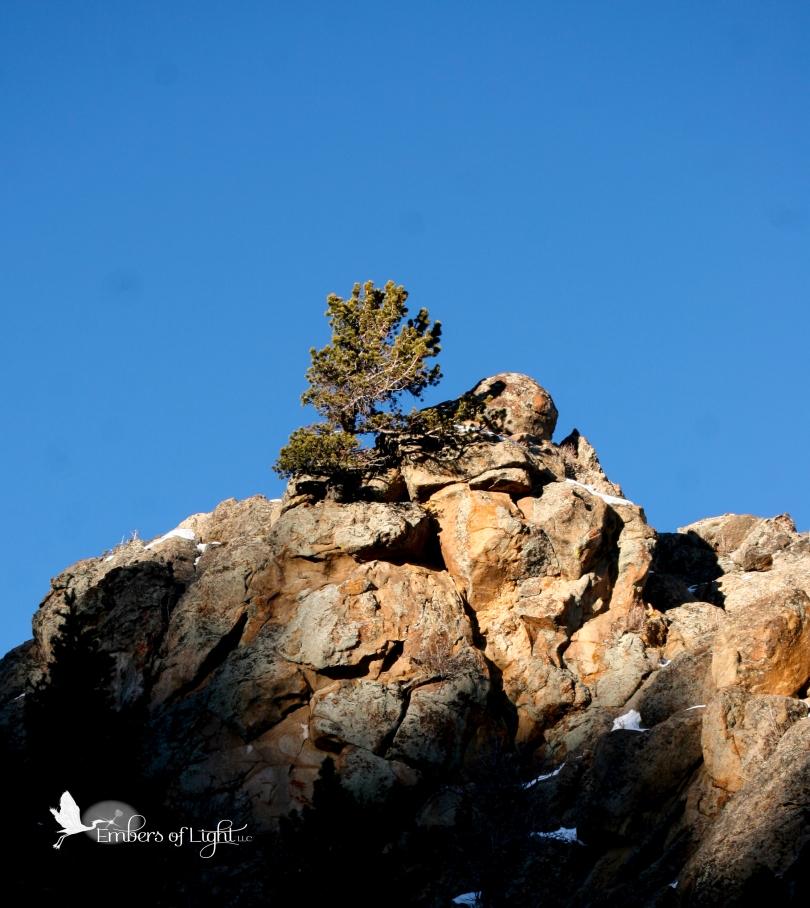 rocky craig, lone pine