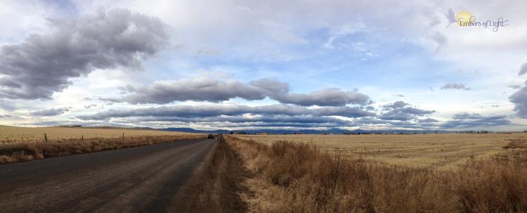 dirt road, wheat fields