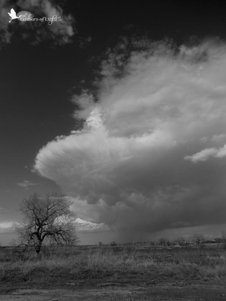 storm cloud, prairie