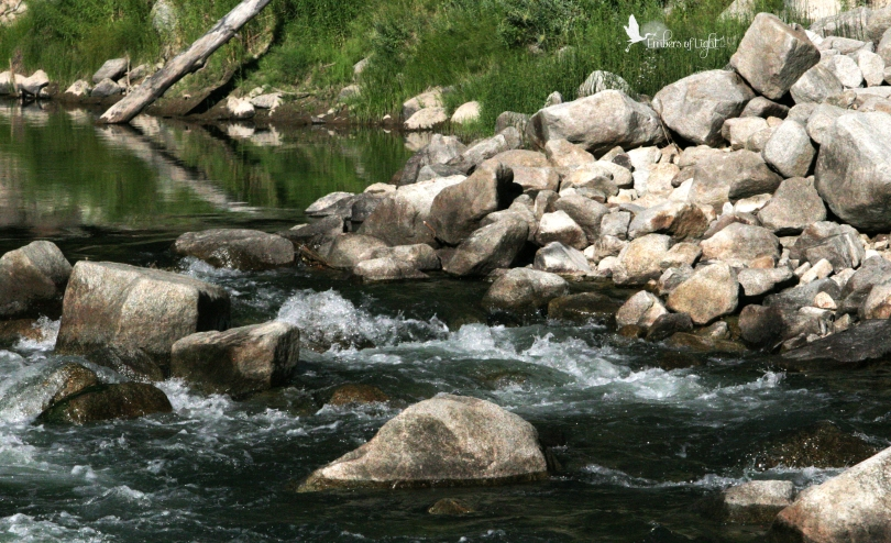 North Umpqua River, stream