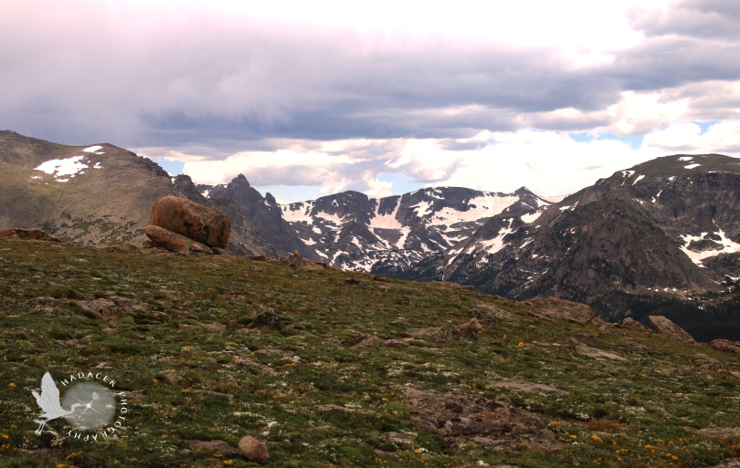 tundra, Rocky Mountain National Park, peaks