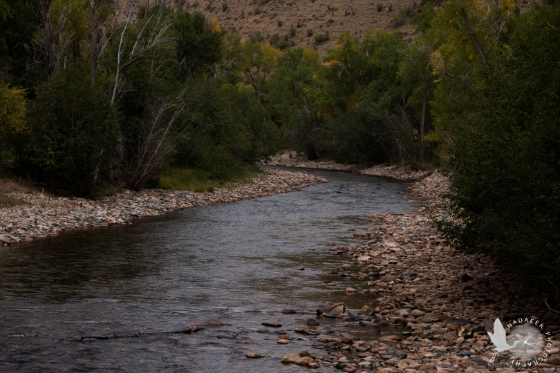 Big Sandy Creek, Wyoming, creek