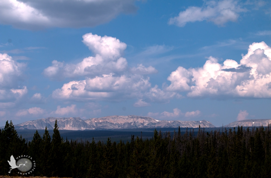 Snowy range; Medicine Bow Mountains