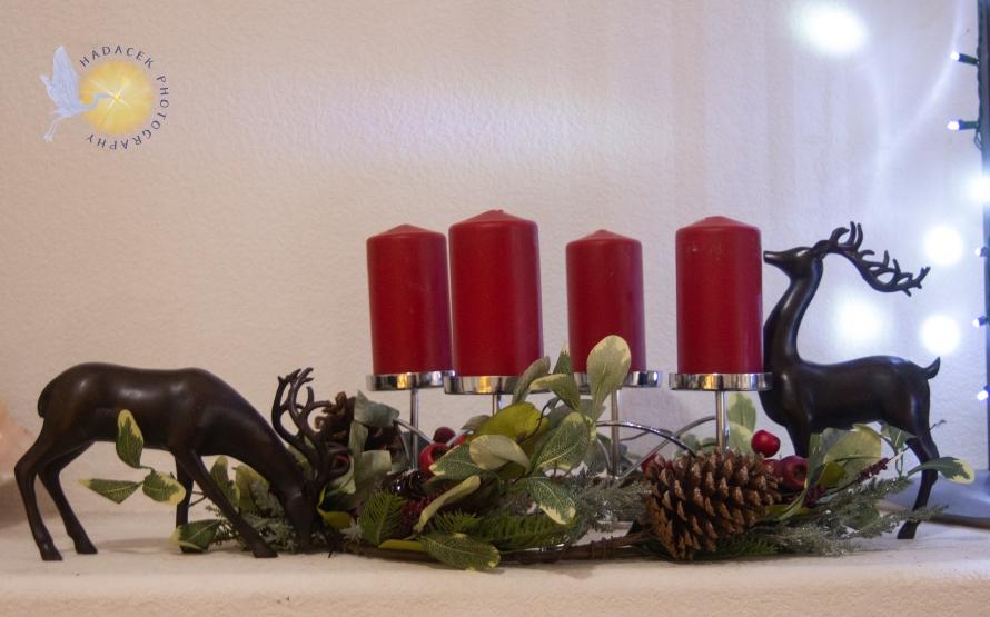 solstice display