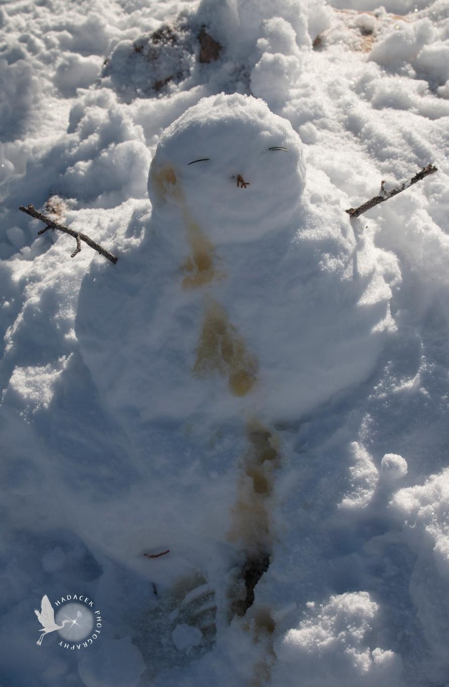 snowman, peed upon