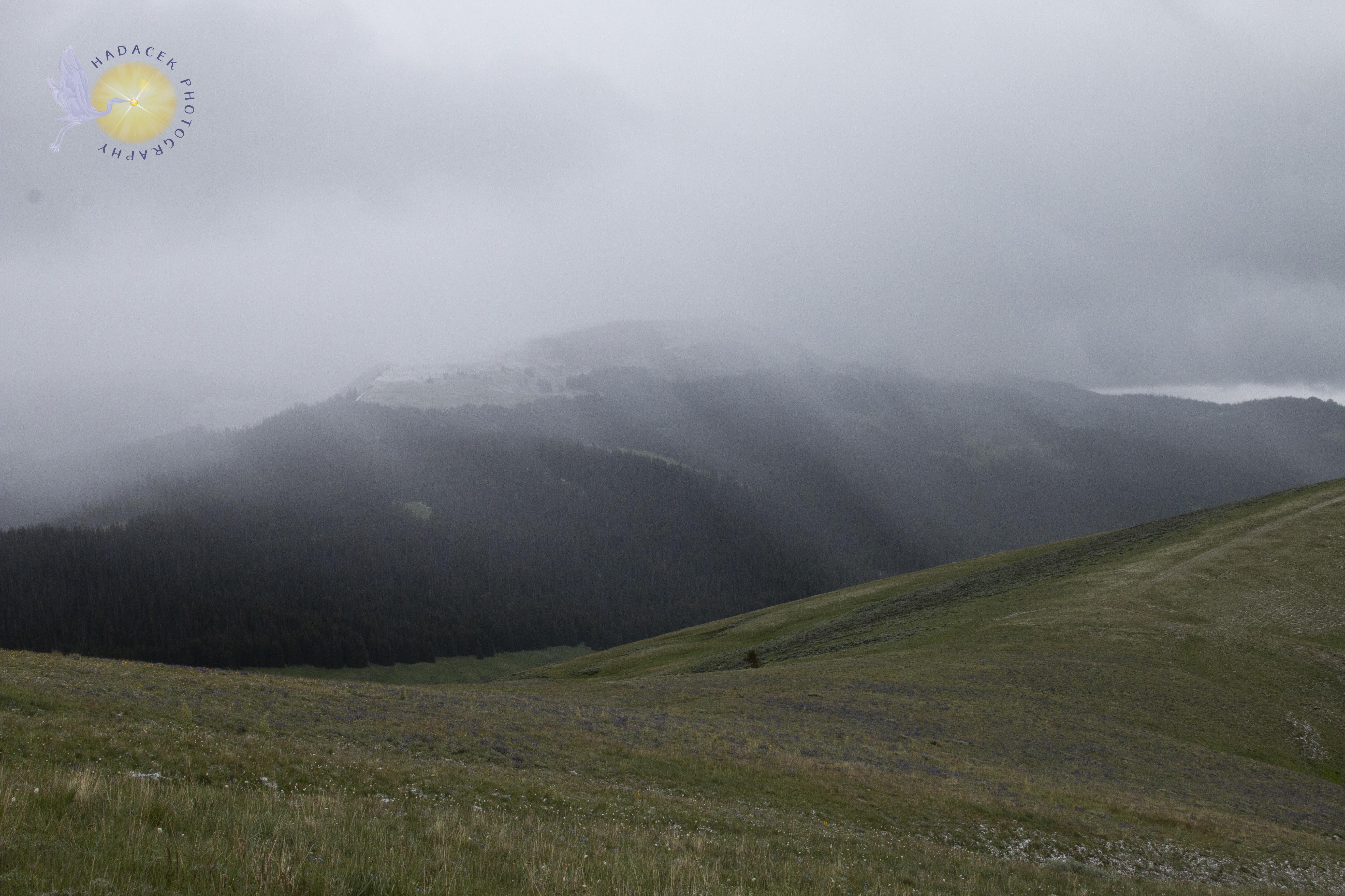 rolling hills in mist