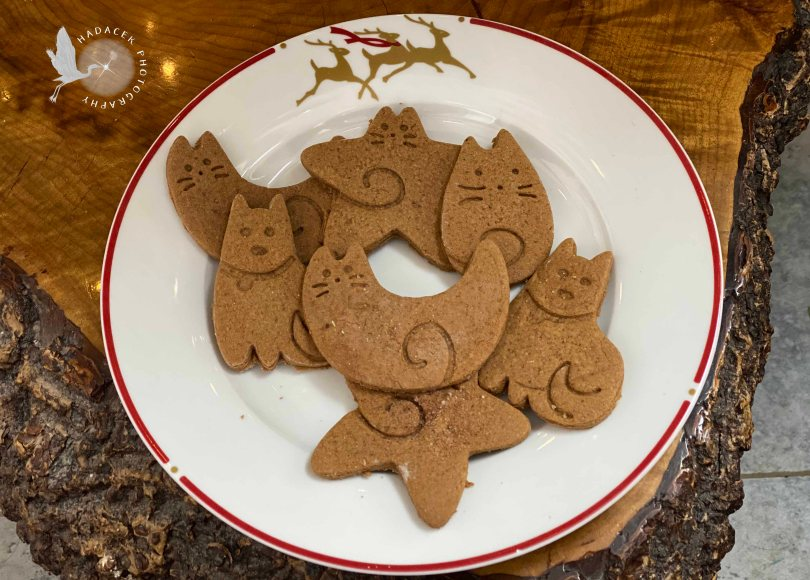gingerbread cookies cats and dogs